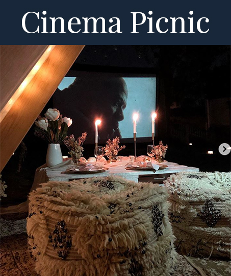 cinema-picnic