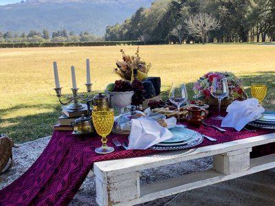 picnic brunch